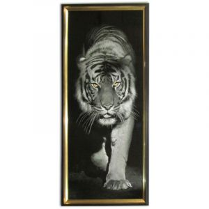 GLOSSY CANVAS PRINT TIGER WITH FRAME